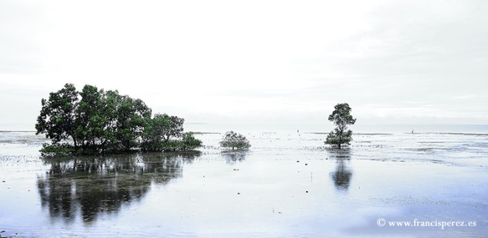 4_34 PHILIPPINES